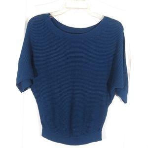 Express Blue Sweater Size XS